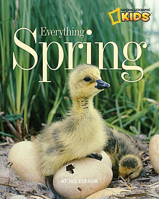 Everything Spring By Esbaum, Jill